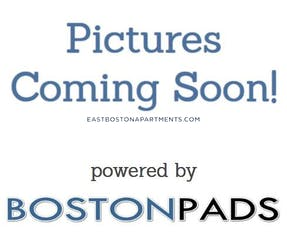 East Boston Apartment for rent 4 Bedrooms 1 Bath Boston - $3,000 No Fee